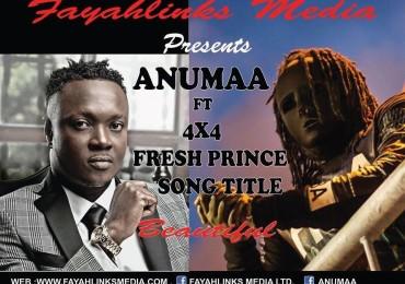 Anumaa-Artwork
